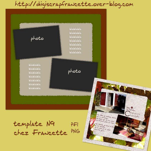 preview template N9