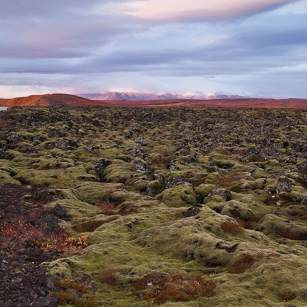 Reykjanes-lava-fileds---Talba-Flickr.jpg
