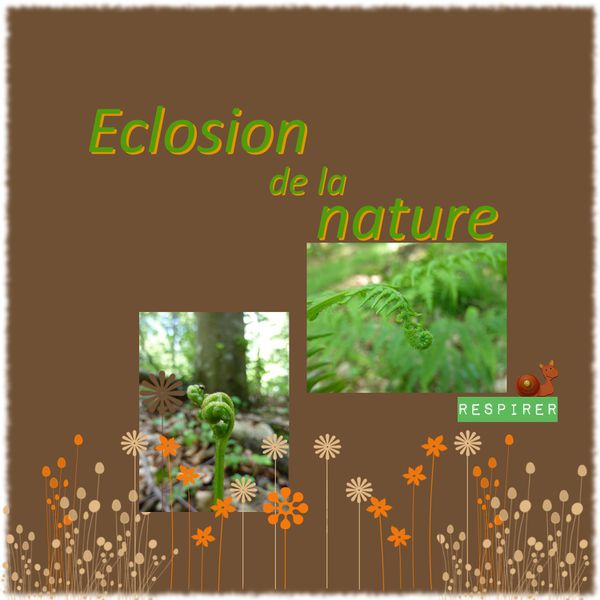 eclosion nature