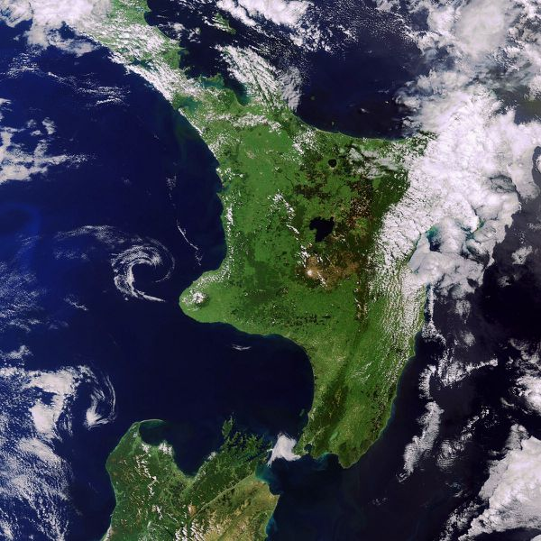Envisat - MERIS - New Zealand North- 23-12-2011 - 21h50 - R
