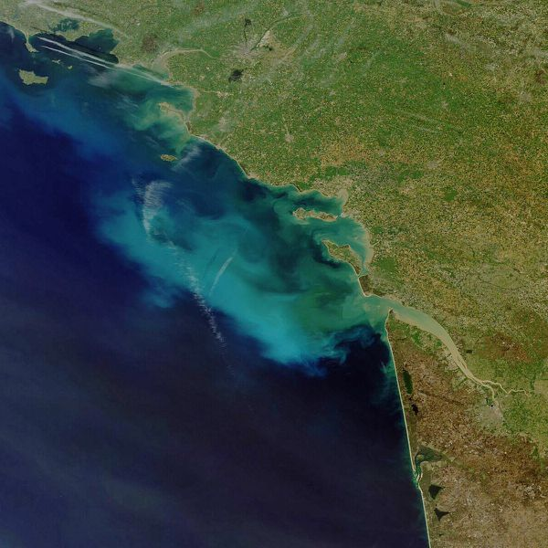 Algal bloom - Envisat - Meris - 09-04-2011 -10h39