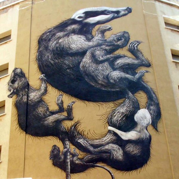 streetartnews roa malaga progress