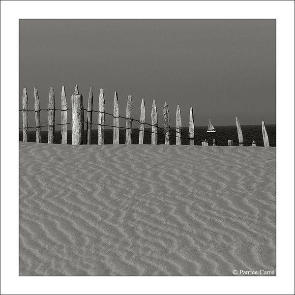 Paysage-dunaire.c.jpg