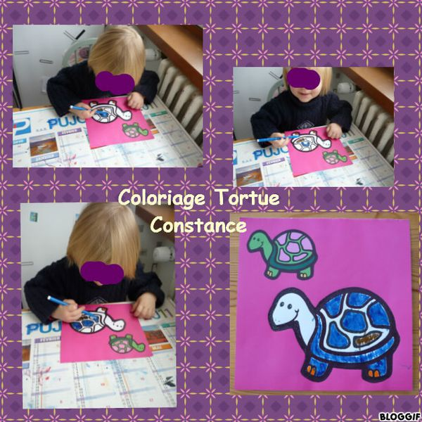coloriage-tortue-constance.jpg