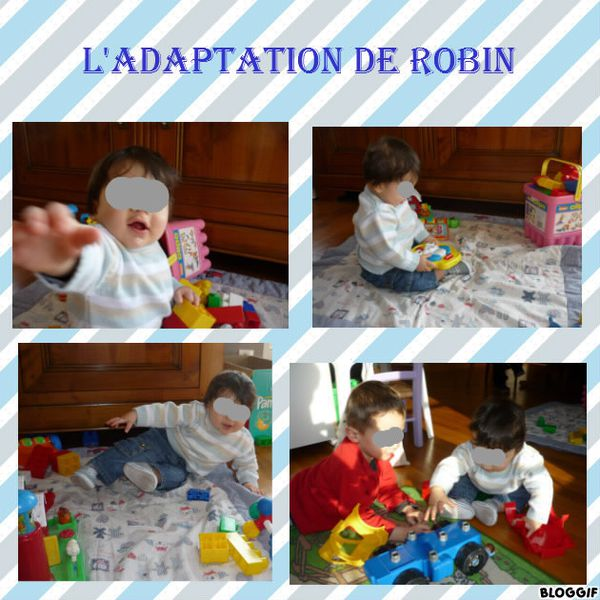 adaptation-robin-jour1-copie-1.jpg