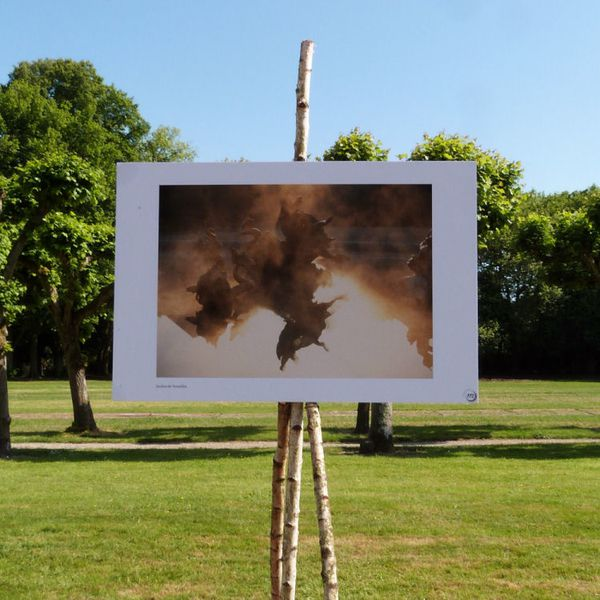 journees-de-la-rose-chaalis---juin-2014---photo-j-copie-1.jpg