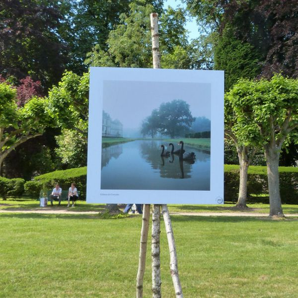 journees-de-la-rose-chaalis---juin-2014---photo-j-copie-4.jpg