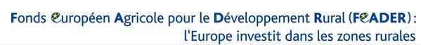 INSERT FEADER l europe-investit cle879de8