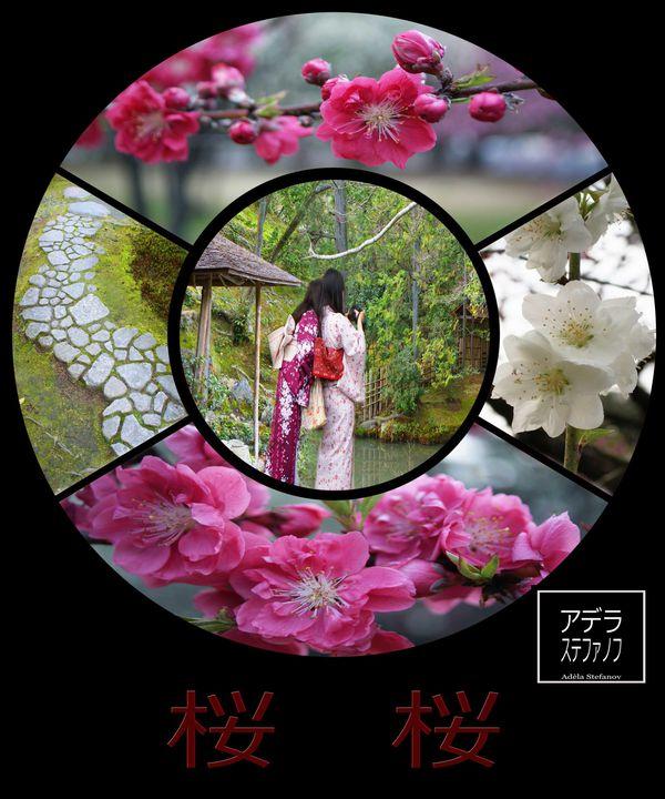 sakura fb-copie-1