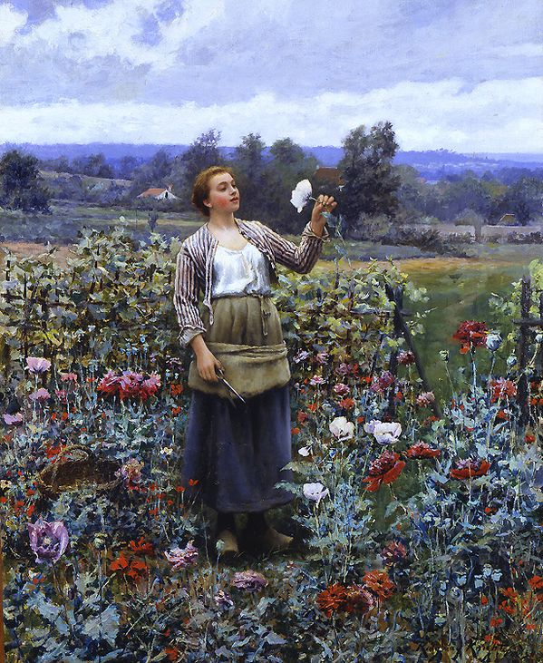 daniel_ridgway_knight_a3464_picking_poppies.jpg