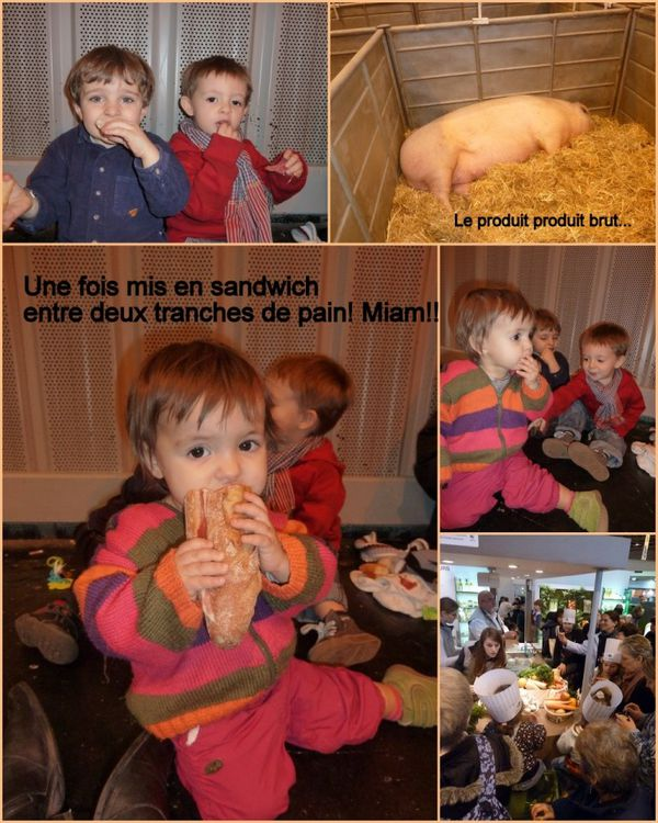 salon-agri-4-cochon---Copie.jpg