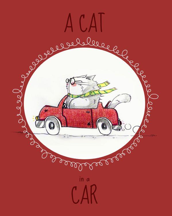 cat-in-a-car