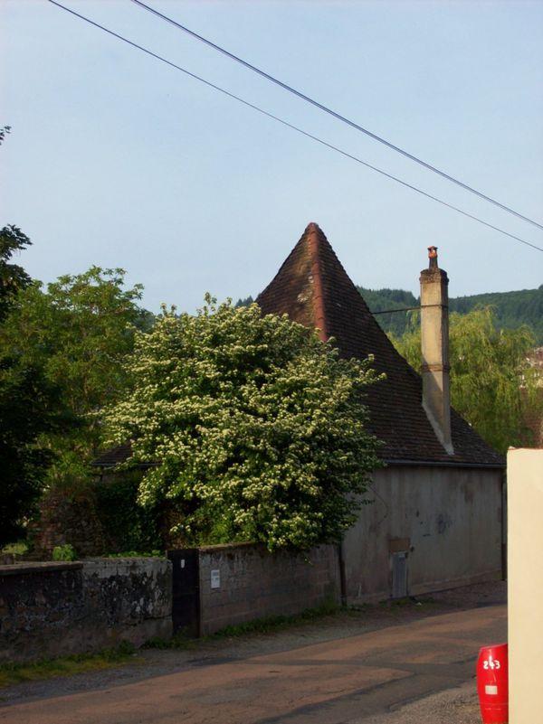Rue Sainte-Anne - 100 5675 (Copier)