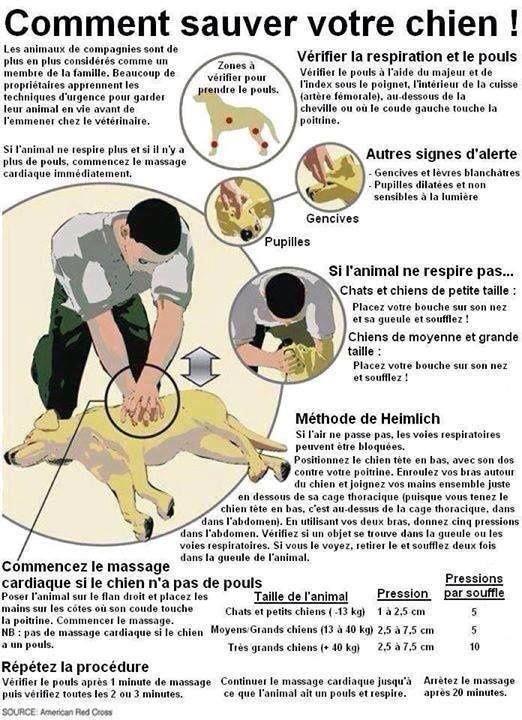 massage-cardiaque.jpg