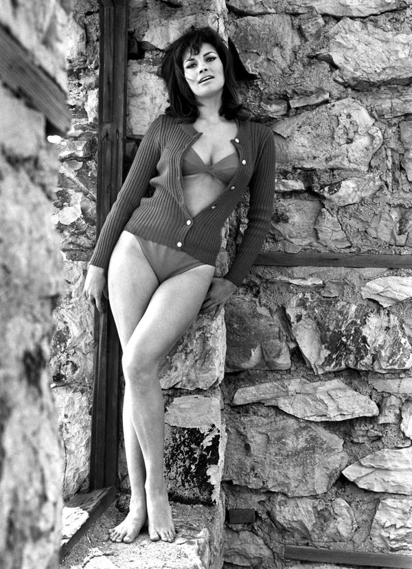 big-raquel-welch.jpeg