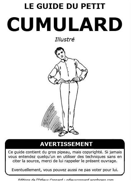 le-guide-du-cumulardCapturer.JPG