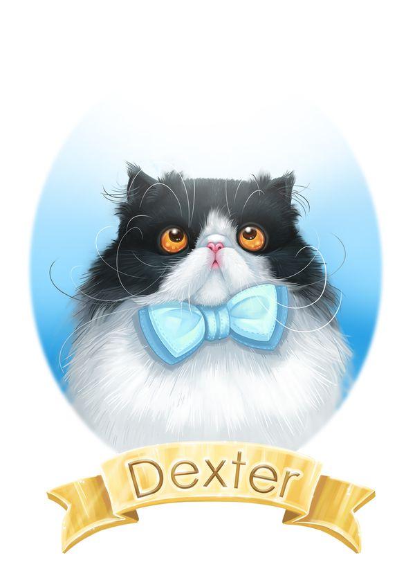 Divers Dexter the persian