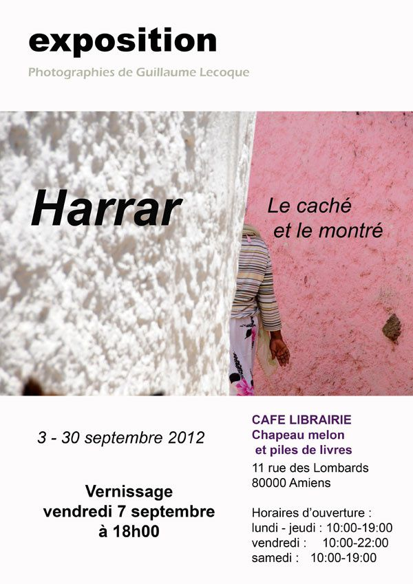 WEB FLYER Harrar2012