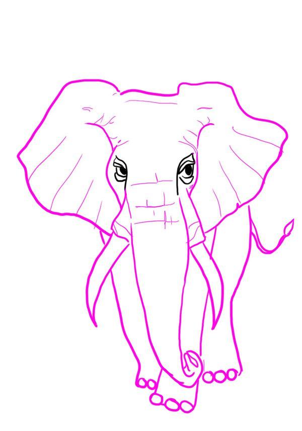 ELEPHANTPINK.jpg