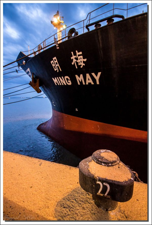 Ming May T5546