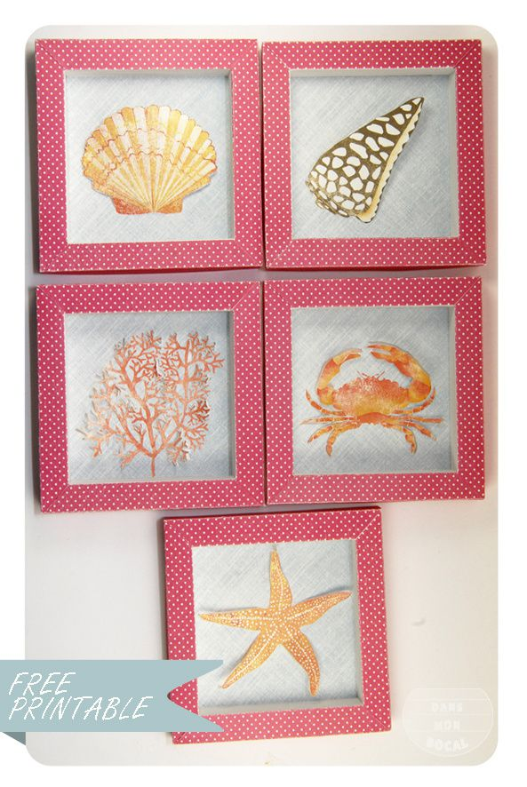free-printable-shell-collection-box-6-copie-1.jpg
