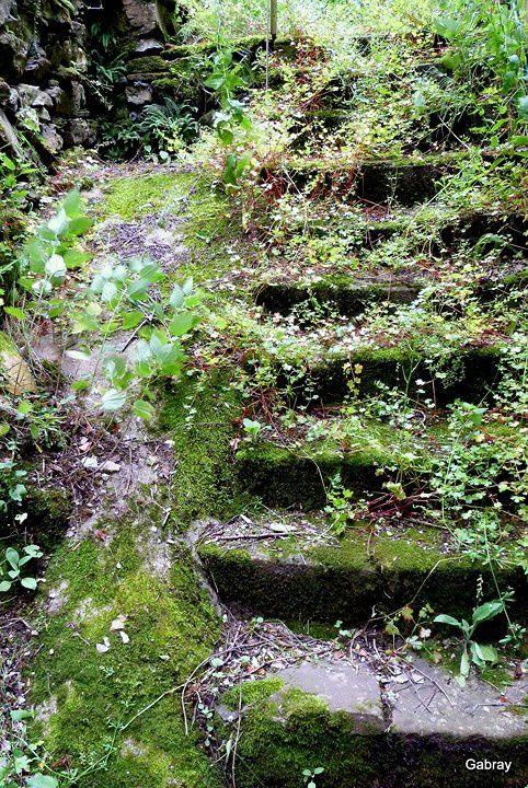 x01---L-escalier.JPG