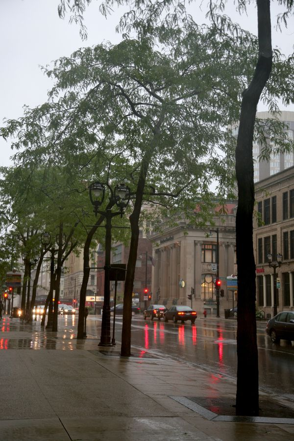 Milwaukee---Downtown---Rain 4755V