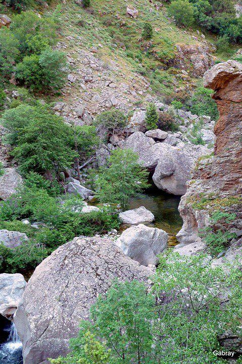 Q01 - Gorges du Golo