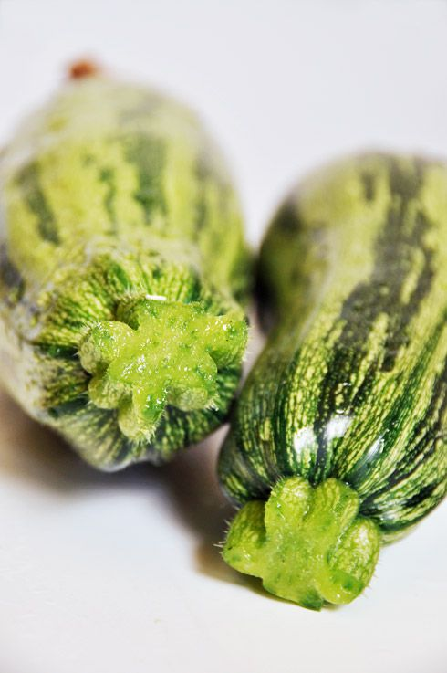 Courgettes_zoom.jpg