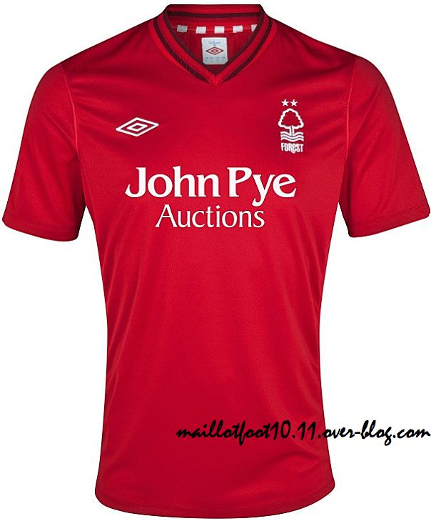 Nottingham-Forest-new-Home-kit-2013.jpeg