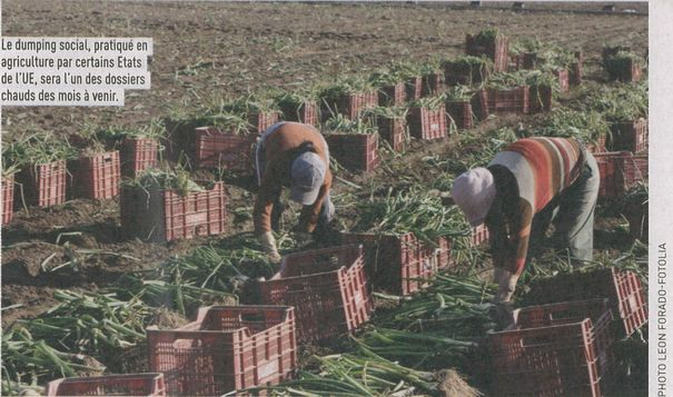 agriculture-la-terre.jpg