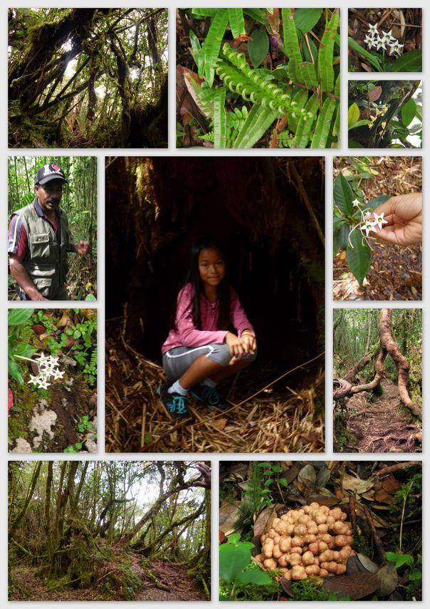 08-2013-Malaisie-TanahRatah-J9-Muthu découverte jungle2