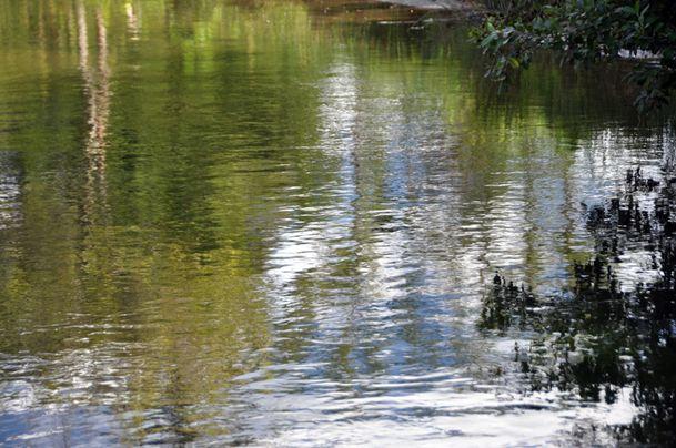 valcanville-17092010-030