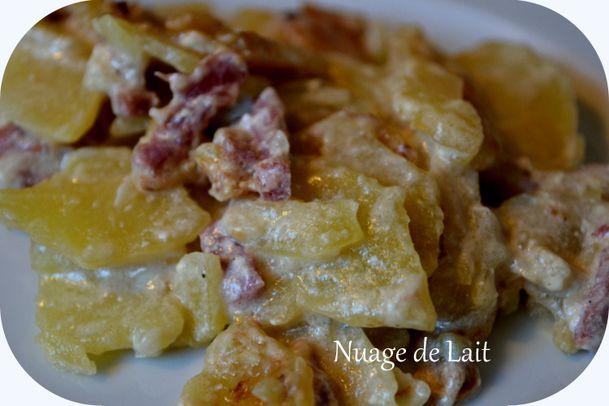 gratin de pommes de terre au cidre