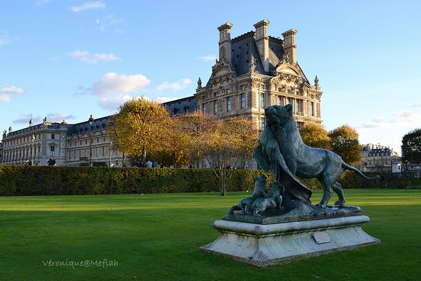 Lion Tuileries 1