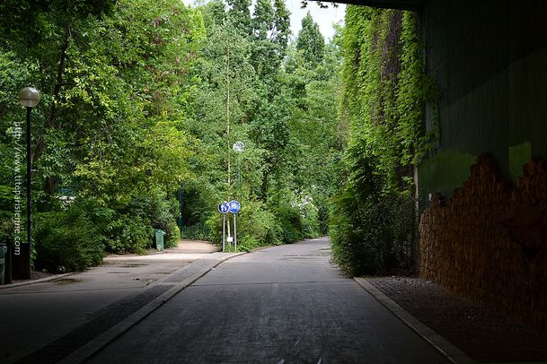 22 Juin 2012 Promenade plantée 1