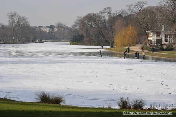16 février 2012 Lac Daumesnil 1