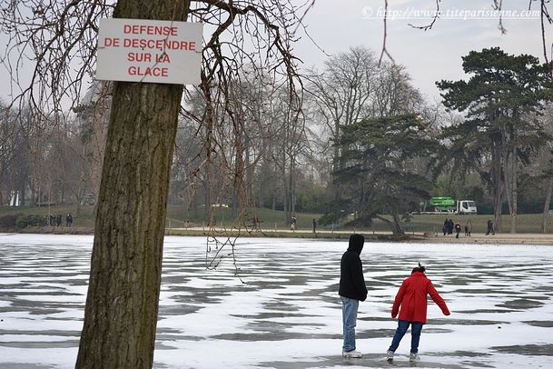 16 février 2012 Lac Daumesnil 4