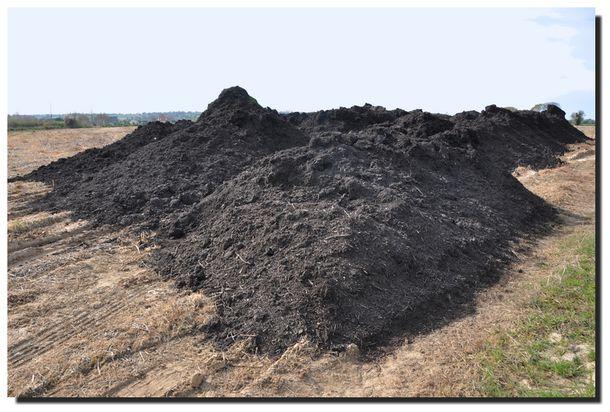 2013-04-compost-0006