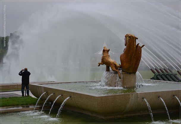 1 Jets d'eau Trocadéro 4