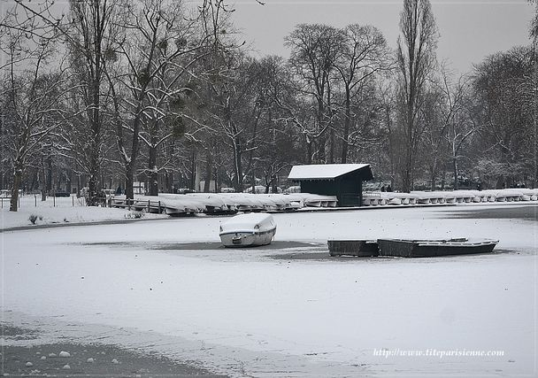 Lac Daumesnil 25 janvier 2013 3