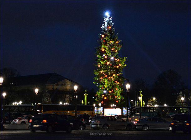 Sapin Place de la Concorde 3