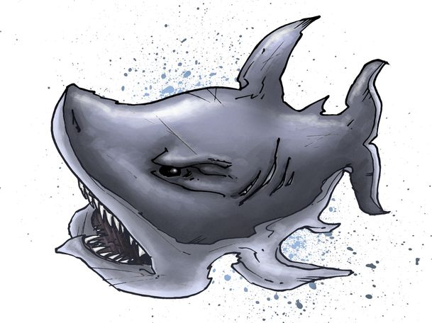 sharky7-copy.jpg