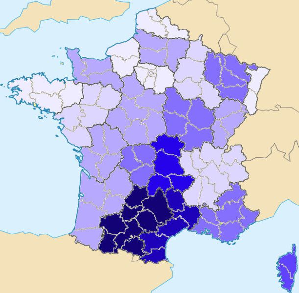 carte_France_departement-vierge-vide---Visionneuse-de-photo.jpg