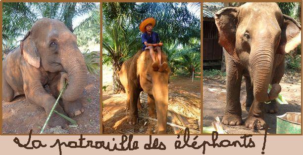 02-Bangkok-J5-la patrouille des éléphants