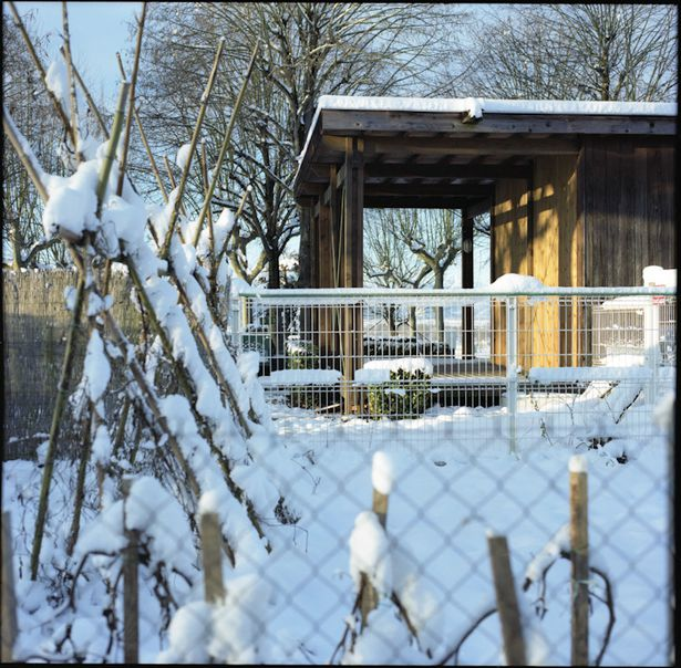 camping 2 neige