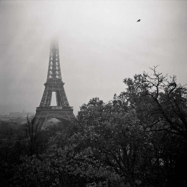 Paris-Tour-Eiffel.jpg