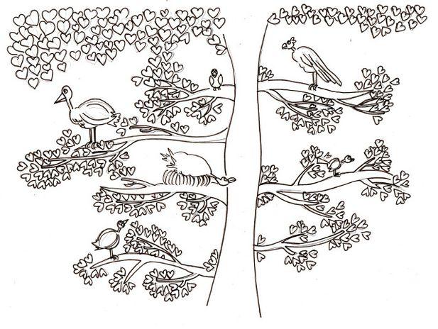 Oiseau-pr-blog-1.jpg