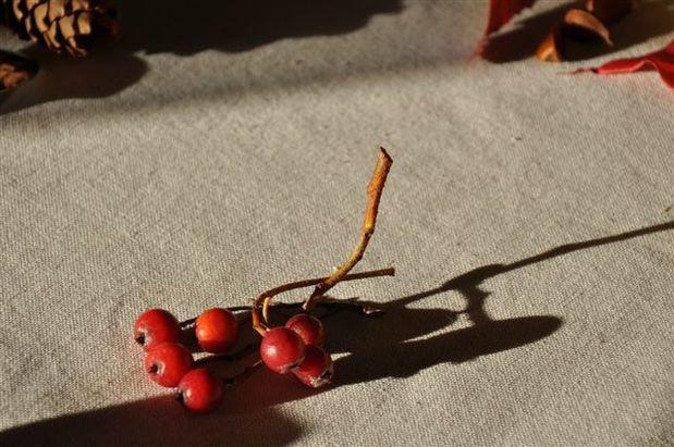ambiance-d-automne 0050