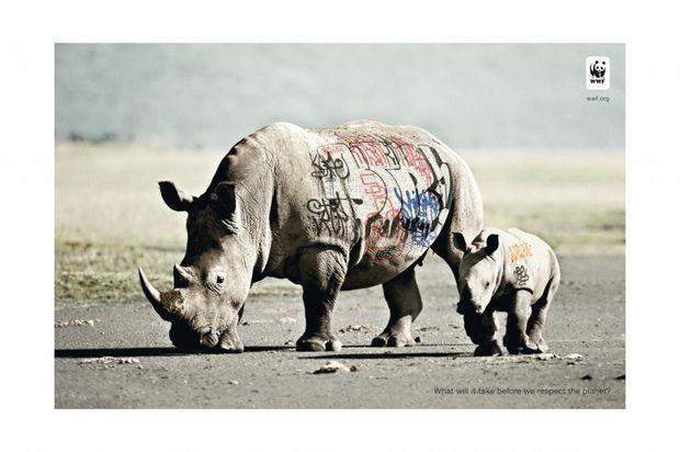 coupsdepub_biodiversity_rhinoceros.jpg
